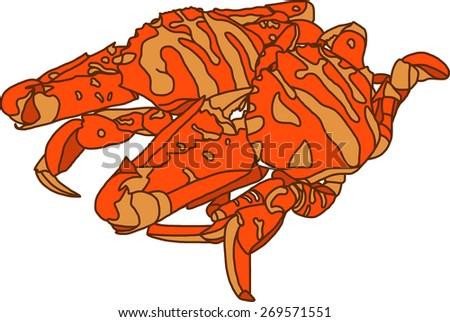 Crabs - stock vector