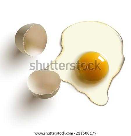 cracked raw egg, shell, yolk and albumen - stock vector