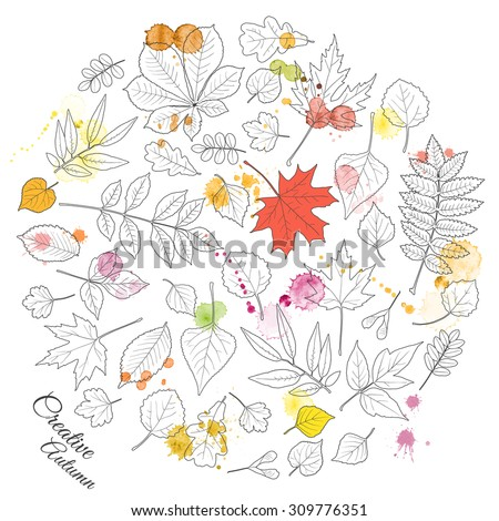 Creative autumn background: leaves of various trees drawn with black pen outlines and splashes of red and yellow watercolor. Red maple and yellow birch leaves. Vector illustration. - stock vector