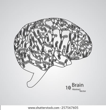 Creative concept of the human brain,  vector elegant illustration