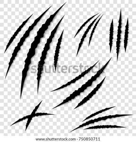 Creative vector illustration of claws paw scratches isolated on background. Art design. Animal horror scratching of cat, tiger, lion, pantera, bear. Abstract concept graphic element.