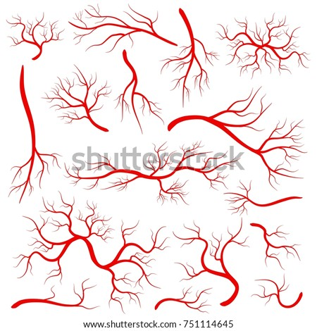 Creative vector illustration of red veins isolated on background. Human vessel, health arteries, Art design. Abstract concept graphic element capillaries. Blood system.