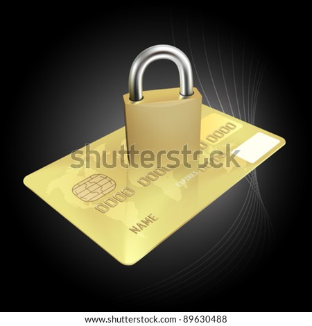 Credit Card Security Concept (EPS10) - stock vector
