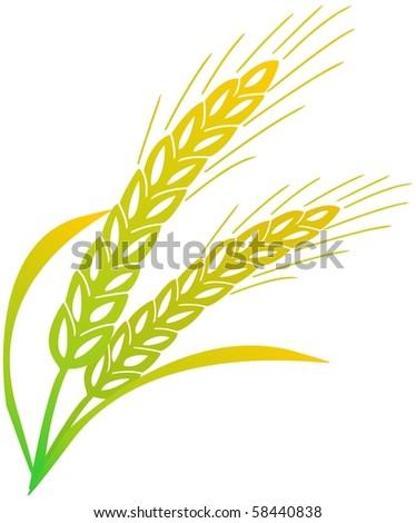 crop - stock vector