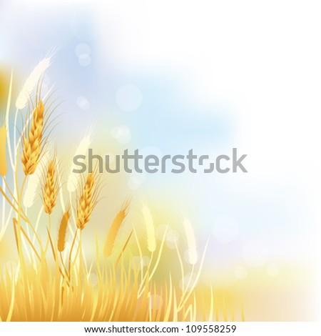 crop background - stock vector
