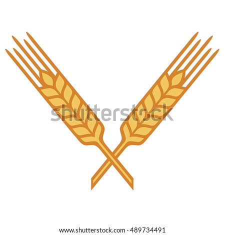 Crossed Ears of Wheat, Barley or Rye, vector visual graphic icons, fully adjustable and scalable