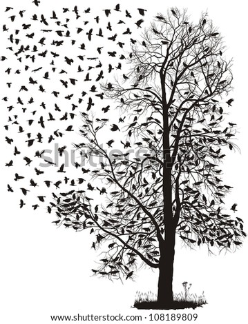 Crows fly away from the tree - stock vector