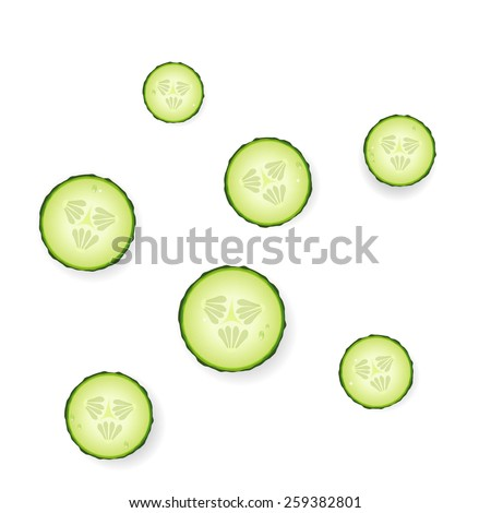 Cucumber slices on white background, vector.
