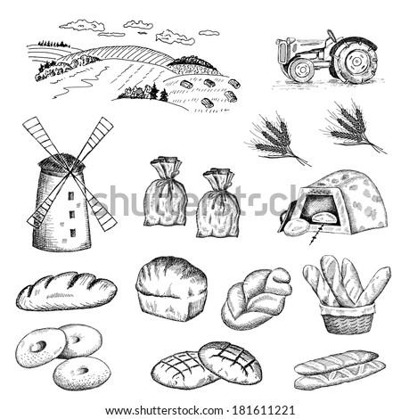cultivation of wheat and bread baking. set - stock vector
