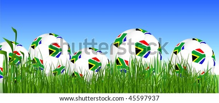 Cup South Africa balls on the grass - stock vector