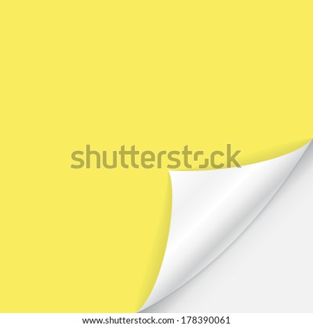 curved sheet of paper  - stock vector
