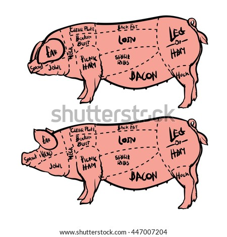 cut meat set hand drawn pig stock photo photo vector illustration rh shutterstock com pig butcher diagram print pig meat diagram