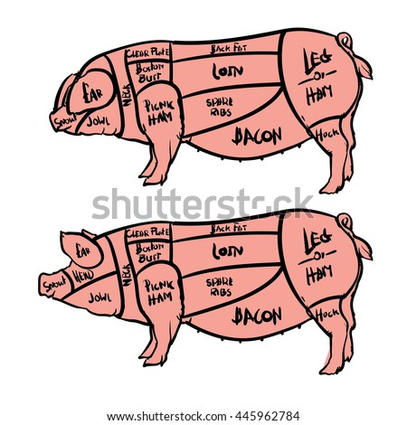 cut meat set hand drawn pig stock vector royalty free 445962784 rh shutterstock com Hog Butcher Cuts Hog Meat Cuts