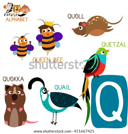 animal with letter q zoo alphabet vectorq letter stock vector 4782
