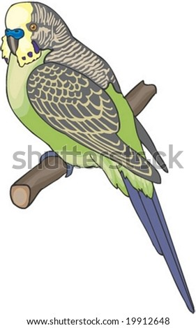 Cute Bird Character - isolated on white background : vector illustration - stock vector