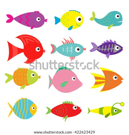 X ray fish stock images royalty free images vectors for Fish children s book