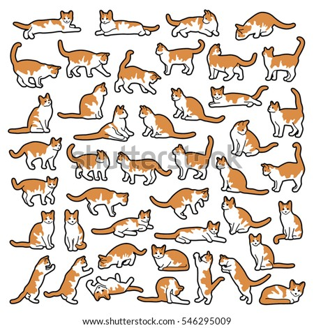 Cute cat collection in cartoon style- vector outline illustration