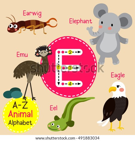 English For Kids : Alphabet, Number, Animal, ... vocabulary