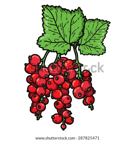 cute currant. Vector cute hand drawn colorful  currant and leaf