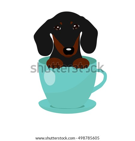 Dachshund Dog Stock Images Royalty Free Images Amp Vectors