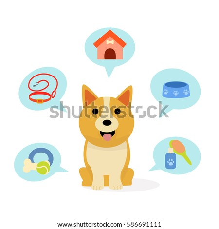 Cute dog. Infographic theme dog. Pet shop. Vector images in cartoon style