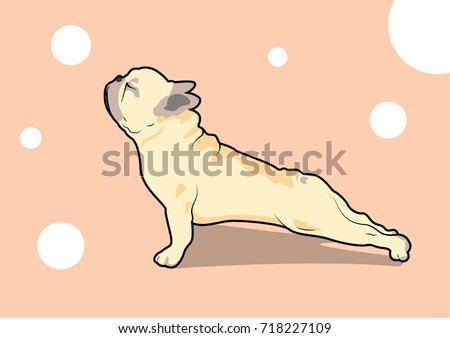 Tackey's Portfolio on Shutterstock