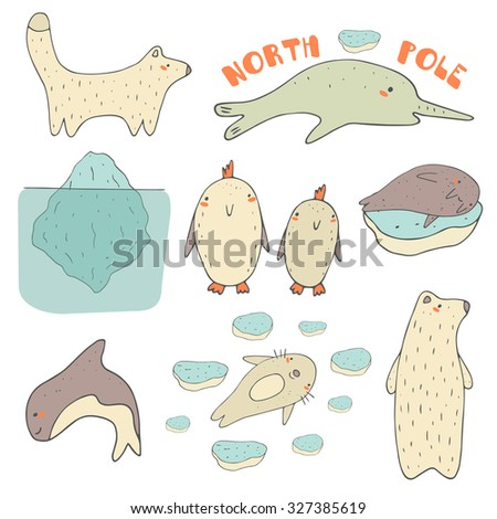 Cute hand drawn doodle north pole, antarctic, arctic animals and objects collection, including white bear, penguin, orca, narwhal, seal, walrus, polar fox, iceberg, ice pieces.Polar wild animals icons - stock vector