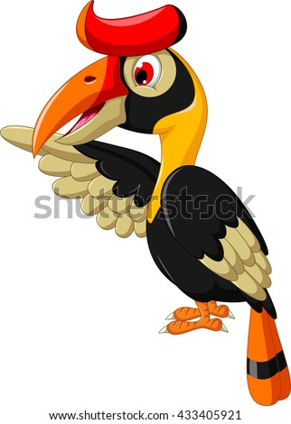 Rhinoceros Hornbill Stock Images Royalty Free Images