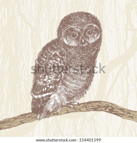cute owl, hand drawing, vector illustration - stock vector