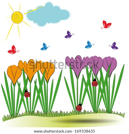 Cute spring background with orange and violet crocuses