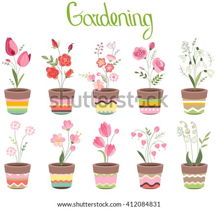 Cute striped flower pots isolated on white. Different flowers, - stock vector