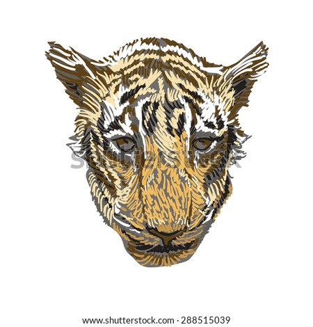 Cute tiger head, hand-painted. Vector - stock vector