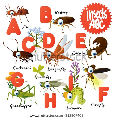 Cute vector animals ABC: Insects: ant, bedbug, earwig, cockroach, dragonfly, inchworm, horsefly, firefly, grasshopper - stock vector
