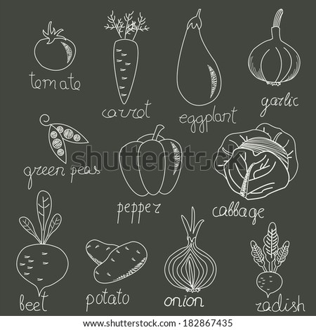 Cute vegetables in vector set. Tomato, carrot, eggplant, garlic, green peas, pepper, cabbage, beet, potato, onion and radish in cartoon style