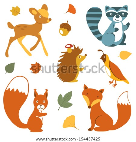 Cute woodland animals collection - stock vector
