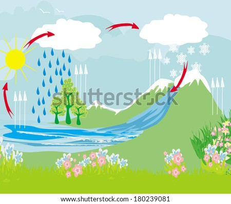 cycle water in nature environment  - stock vector