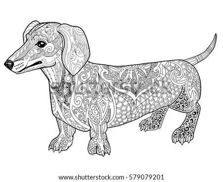 Dachshund Doodle Coloring Book Page For Adult Ethnic Animal Vector Illustration