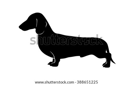 Dachshund ,  exhibition stand - stock vector