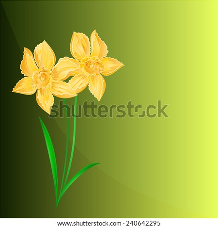 Daffodil Spring flower green background place for text vector - stock vector