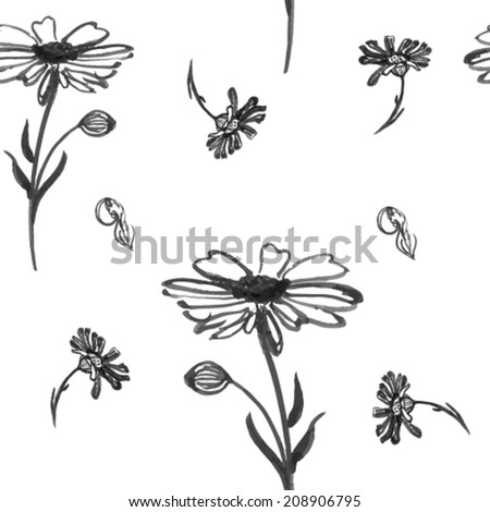 Daisies and chamomile background silhouette pattern isolated on white