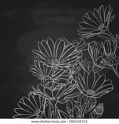Daisies Sketch Over Chalk Blackboard, Floral Vector Background - stock vector