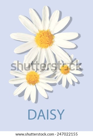 Daisy Flower Vector Polygon - stock vector