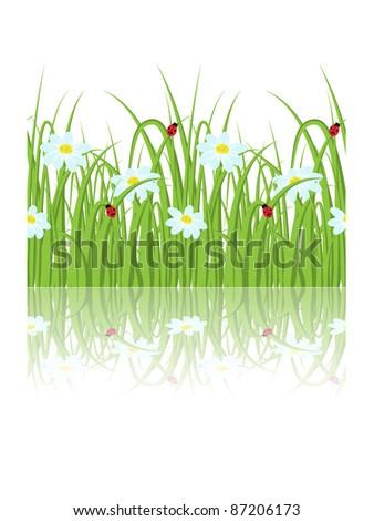 Daisy grass seamless border - stock vector