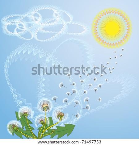 dandelion background, vector illustration - stock vector