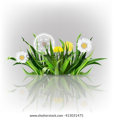 dandelion, green grass, yellow flower illustration, isolated detailed vector - stock vector