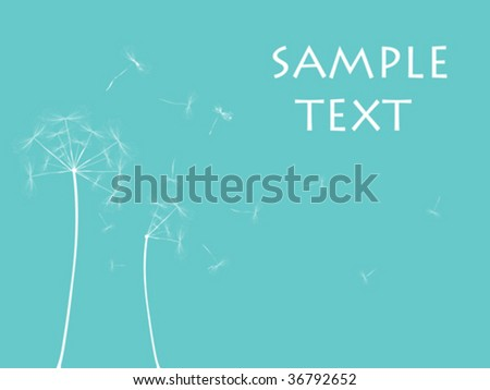 Dandelion illustration, vector art - stock vector