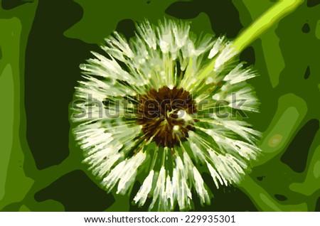 dandelion on a green garden vector image - stock vector