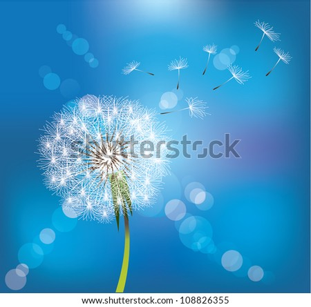 Dandelion on blue sky background - stock vector