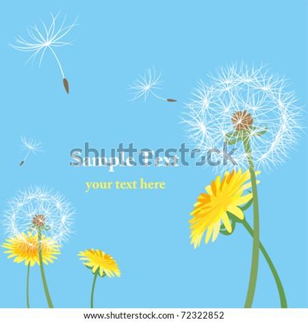 Dandelion seeds. Illustration vector. - stock vector