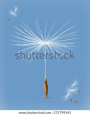 Dandelion seeds, vector icon - stock vector